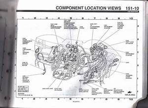Wiring Diagram For Fuse  8 94 Gt Vert