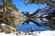 Tenaya Lake Yosemite