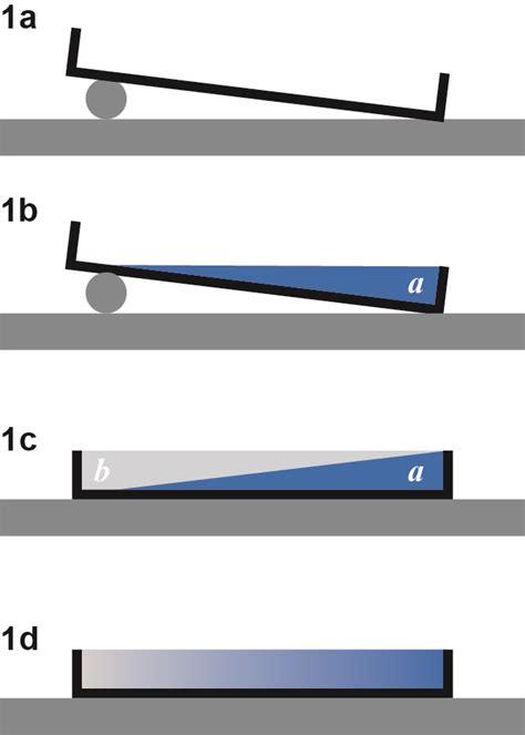 gradient tableware linear chemical gradients in agar