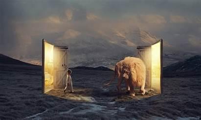 Narnia Fantasy Dream Landscape Channel Background Doors