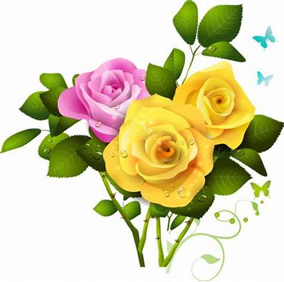 Bouquet Yellow Rose Pink Clipart Flower Roses