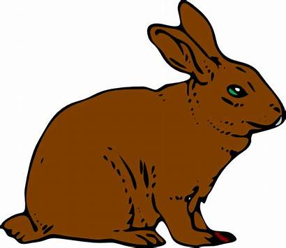 Rabbit Clip Clipart Hare Brown Clker Bunny