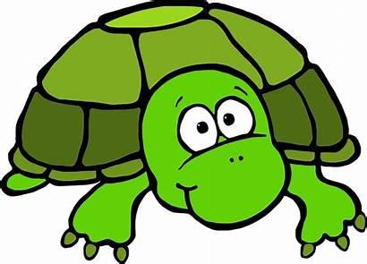 Turtle Clipart Clip Turtles Tortoise Sea Funny