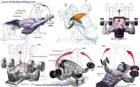 The Best Dumbbell Chest Exercises Allbodybuildingcom