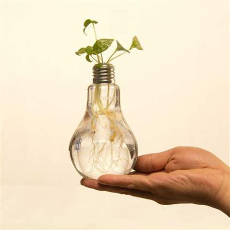 Light Bulb Vase Buy by Aliexpress Buy Light Bulb Transparent Glass Vase