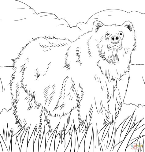 alaskan grizzly bear coloring page  printable