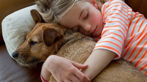 top reasons  adopt  pet  humane society