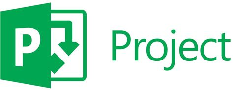 What Is Microsoft Project 2013?