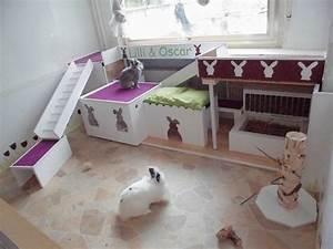 Kaninchengehege Bauen Innen : innenhaltung fotos kaninchenhaltung pinterest gehege kaninchen kaninchenstall und kaninchen ~ Frokenaadalensverden.com Haus und Dekorationen