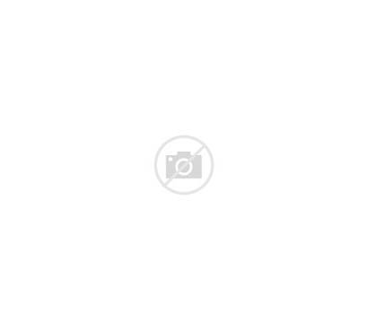 Glass Refrigerated Curved Bakery Federal Vertical Zone