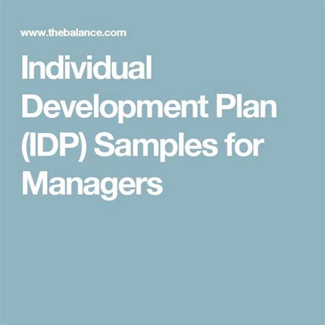 individual development plan idp samples
