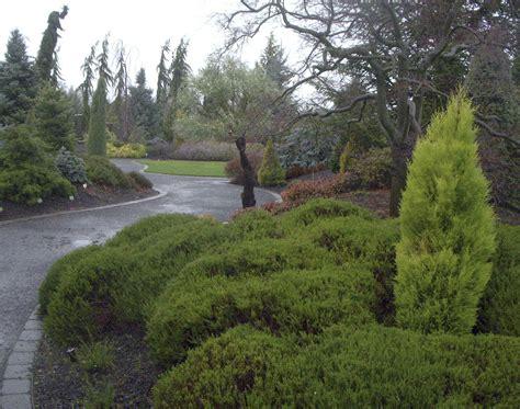 winter garden invite  home  vidette