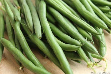 can you freeze fresh green beans how to freeze fresh green beans made to be a momma