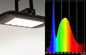 Wir Sind Heller : wir sind heller das lichtspektrum ~ Markanthonyermac.com Haus und Dekorationen