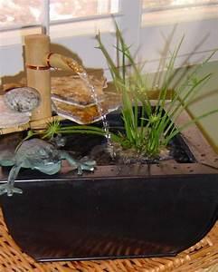 Making A Pond in a Pot HGTV