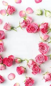 Framework from roses | Floral, Pink roses, Flowers