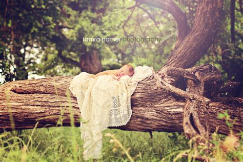 photography ideas outside toddler photography ideas outside www imgkid com the image kid has it