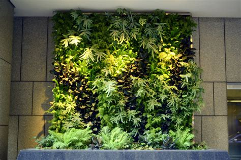 verticle garden plants on walls vertical garden systems 6 months mature at 100 pine san francisco