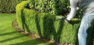 Bricolage Clermont Ferrand : jardinage entreprises ~ Melissatoandfro.com Idées de Décoration