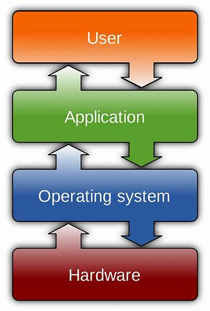 Operating System Computer Network Wikipedia Placement Wiki