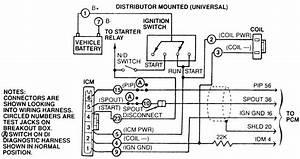 1989 Ford Tempo Fuel Pump Location  1989  Free Engine