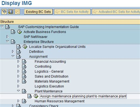 plant customization  sap