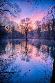 Beautiful Nature Photography Winter