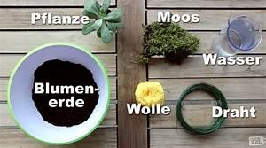 Kokedama Selber Machen : kokedama das brauchst du zum selber machen diy projekte pinterest pflanzen garten und ~ Orissabook.com Haus und Dekorationen