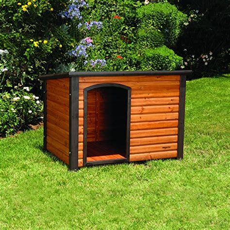 dog house  winter choices   insulated