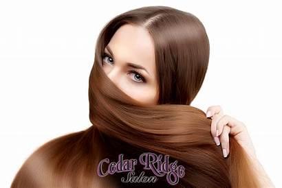 Hair Shiny Salon Hairstyle Woman Grow Finally