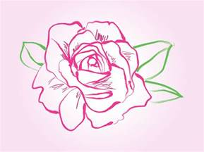 Rose Vector Drawing