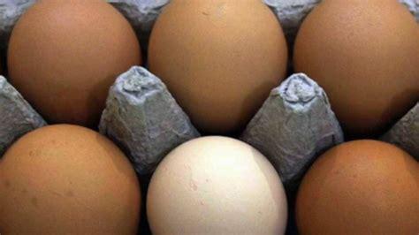 Egg Prices Jump as Bird Flu Spreads - WSJ