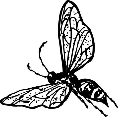 wasp clip art  clkercom vector clip art