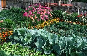 Gartengestaltung Bauerngarten Bilder : bauerngarten planen beete anlegen gem se kr uter anbauen ~ Markanthonyermac.com Haus und Dekorationen