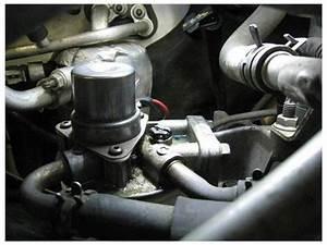 Fuel Filter Aluminum Head Bleeder Screw