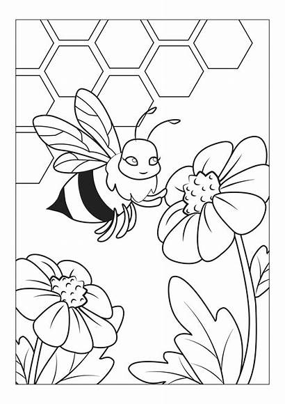 Pages Coloring Colouring Cool Bugs Super