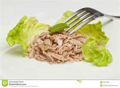 canned tuna chunks royalty  stock  image
