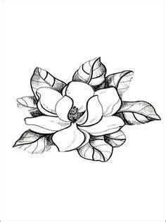 10+ Flowers ideas   flower drawing, flower outline