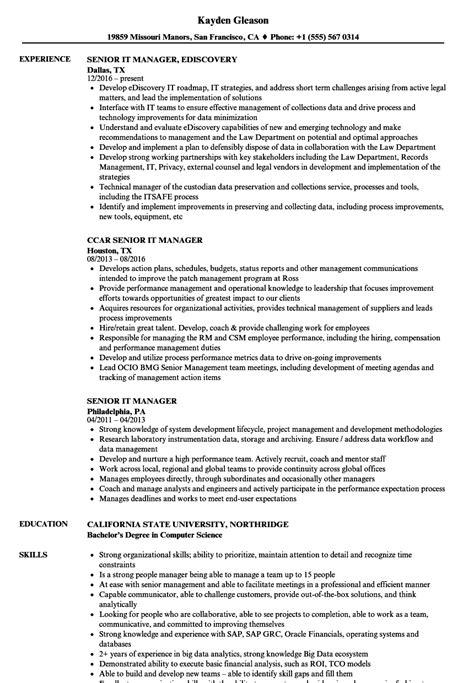 Senior Manager Resume Sle by Senior It Manager Resume Sles Velvet