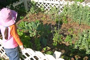 Is Growing Your Own Vegies Worth It?
