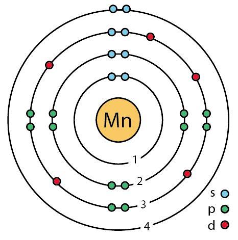 Manganese Protons by File 25 Manganese Mn Enhanced Bohr Model Png Wikimedia