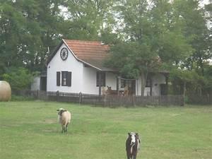 Haus Köln Kaufen : in ungarn bugac ein reiterhof mit teich ist zu verkaufen in k ln ferienimmobilien ausland ~ Whattoseeinmadrid.com Haus und Dekorationen