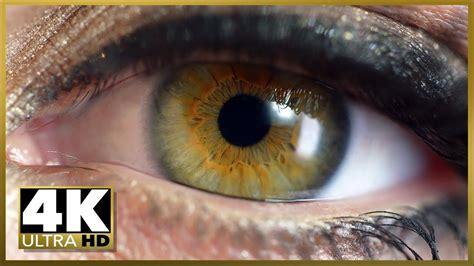 ultra hd cinematic demo uhd oled tv sampler test