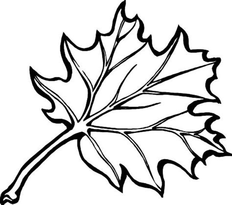 fall leaves coloring pages leaves to color coloring part 8