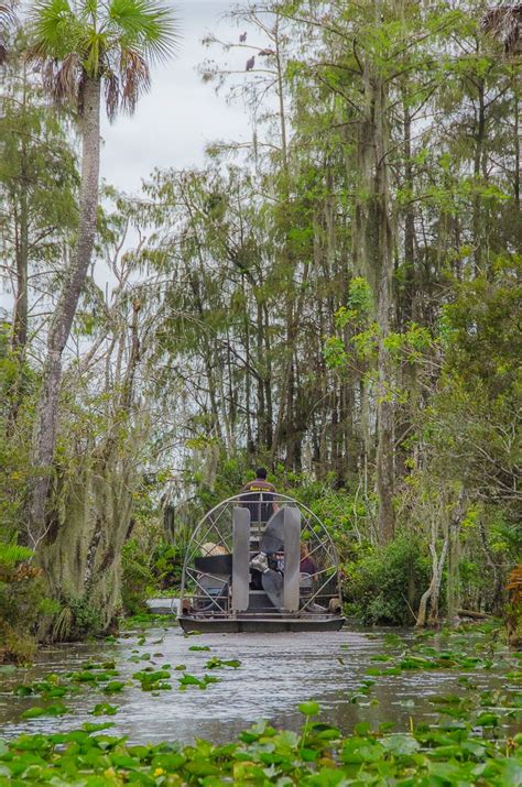 Everglades Airboat Tours Seminole by Best 25 Everglades Airboat Ideas On Florida