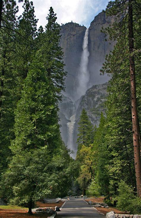 The Yosemite Peregrine Lodge Hikes Valley