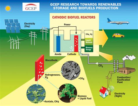 Biofuel Engine Diagram by Stanford The Global Climate And Energy