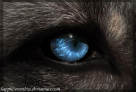Eye Of Mahigun The She Werewolf By Sapphiresenthiss On