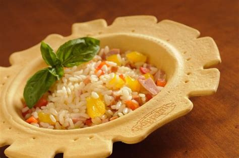edible plates bringing fun  green design  dining