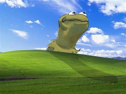 Meme Background Windows Xp Samsung